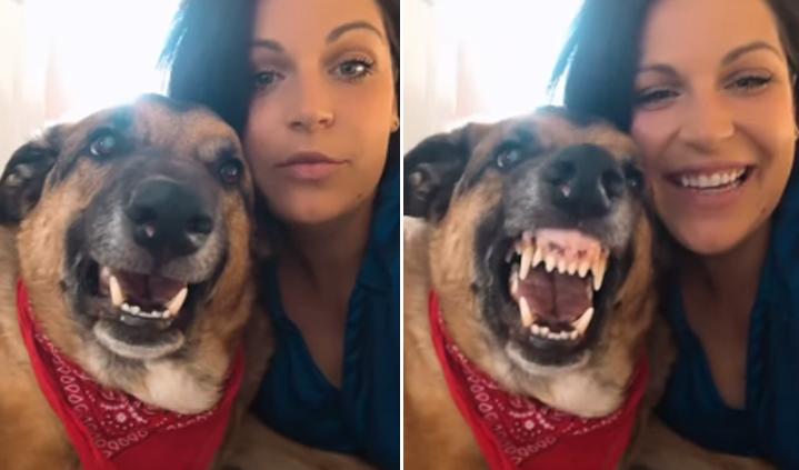 Joven quiere tomarse un selfie con su perro, pero este reacciona así [VIDEO]