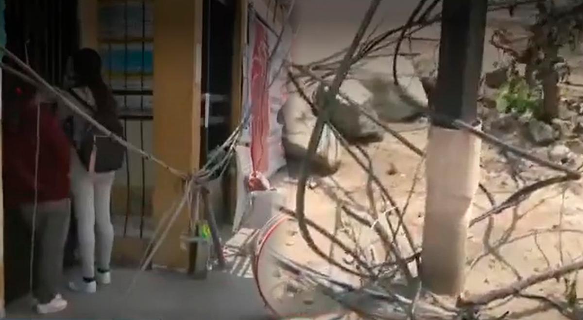 SJL: Cables de telefonía cayeron en la entrada principal de un centro de salud